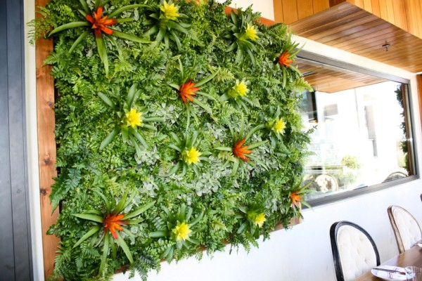 Tropical Green Wall – Kettner Exchange