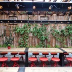 Vertical Garden Walls – Soda Swine Bar View
