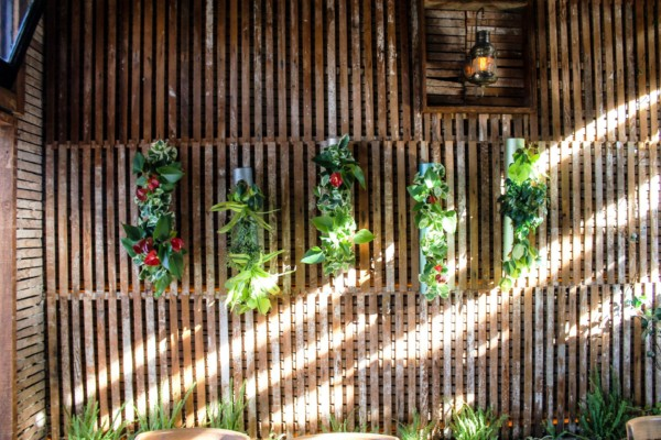 Vertical Garden Wall Design – Soda Swine