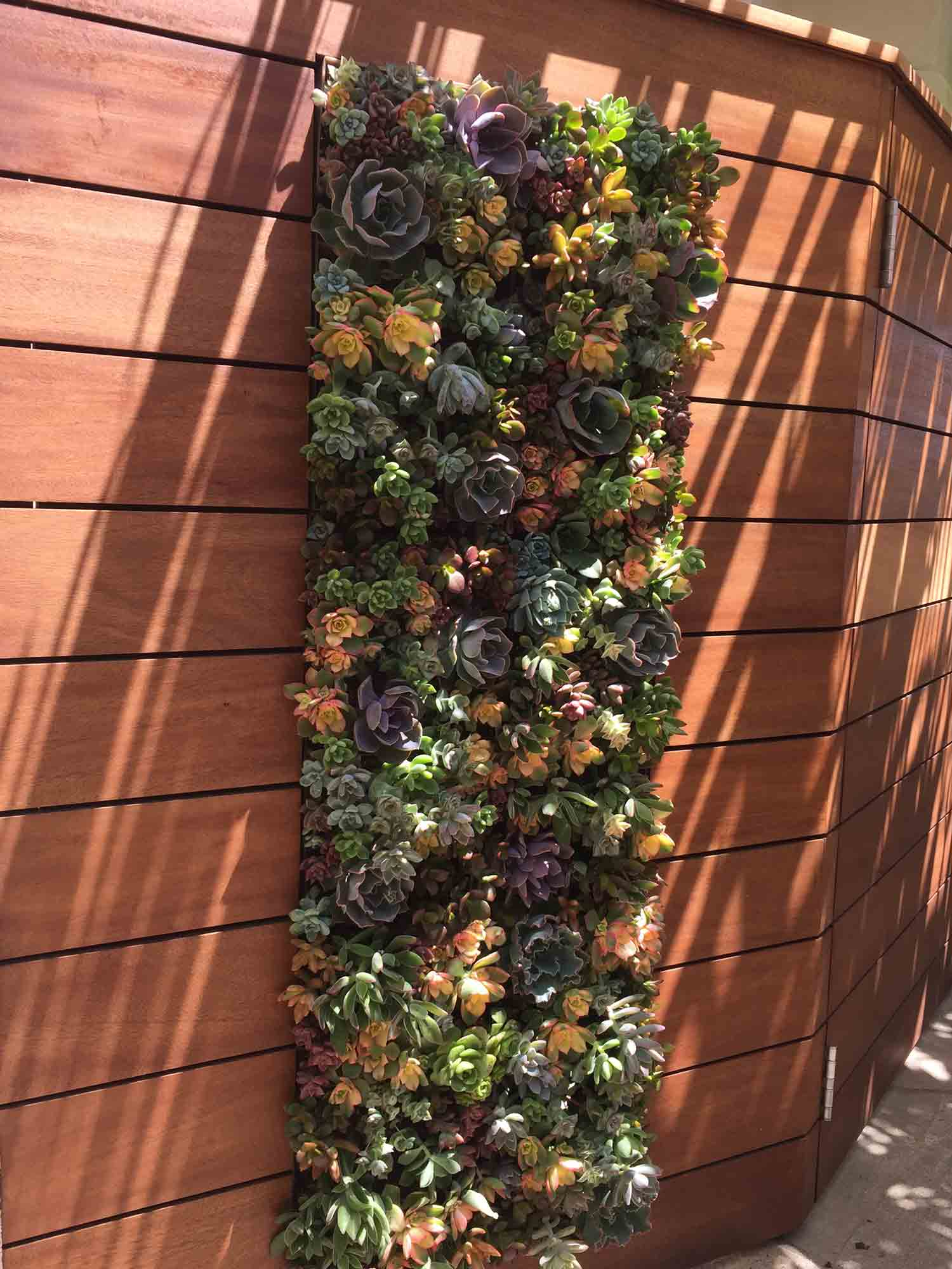 Residential Living Wall La Jolla