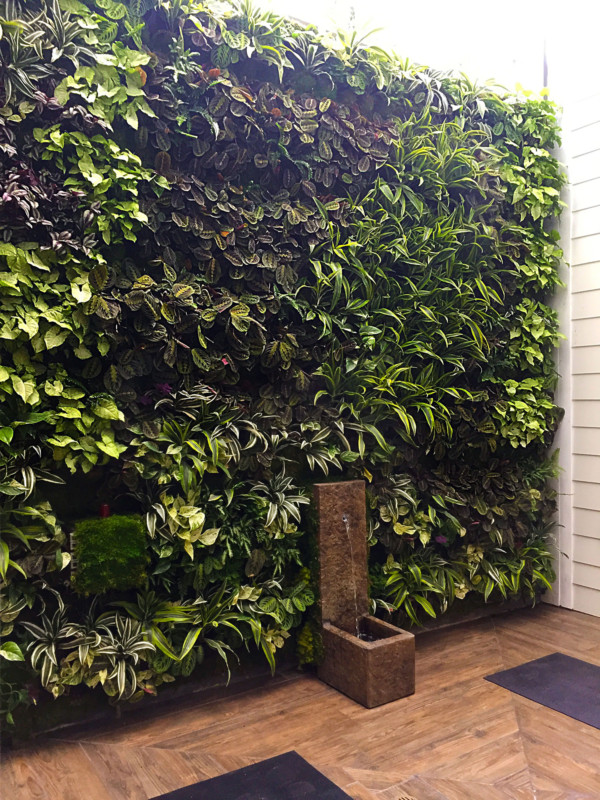 Los Angeles, Westwood High End Residence Living Wall