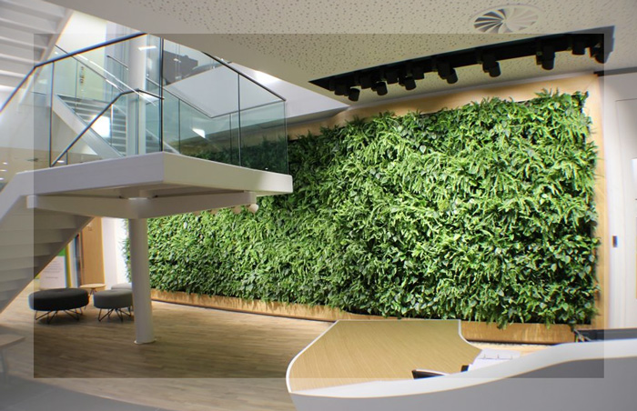Leasing a Living Wall? Why not.