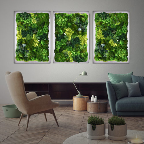 Wall Framed Garden Art