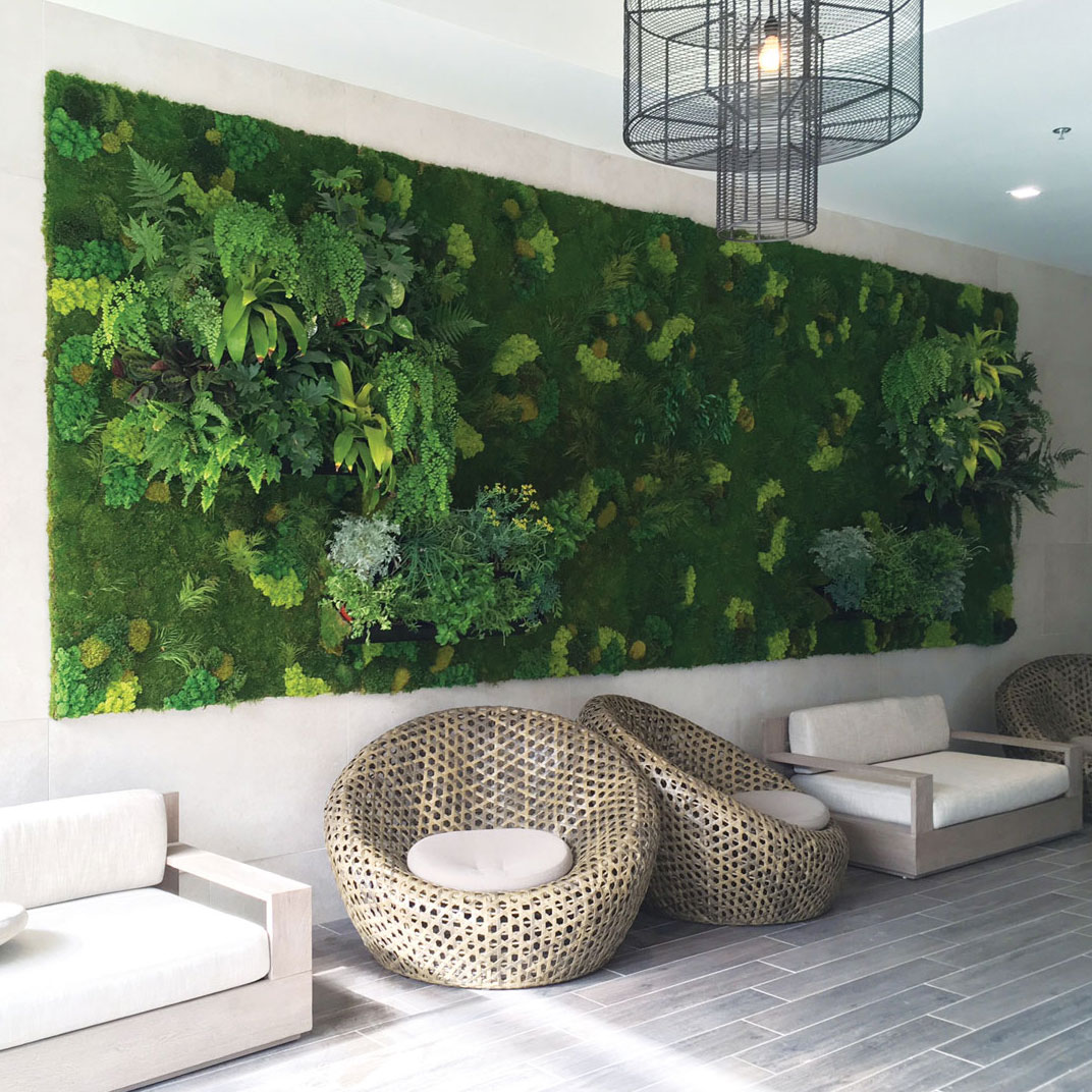 living walls truevert vertical garden solutions san diego. Black Bedroom Furniture Sets. Home Design Ideas