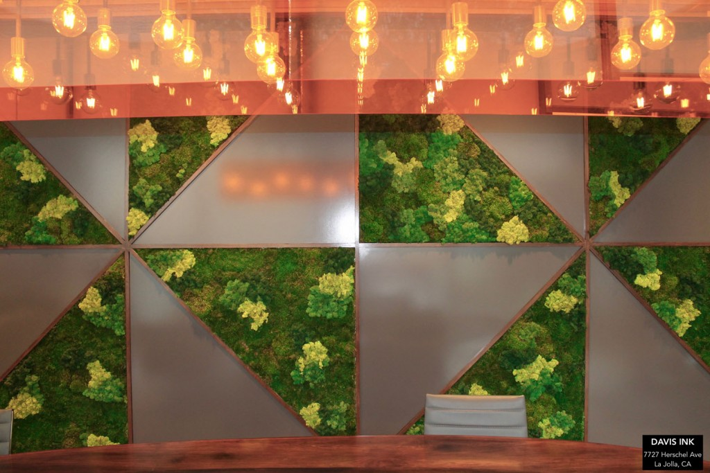 Moss Art – Conference Room Wall