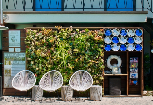 Pearl Hotel – Succulent Wall