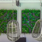 Succulent Wall for Hotel Decor