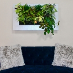 Wall Decor – Living Wall