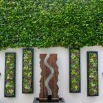 Outdoor Succulent Living Wall