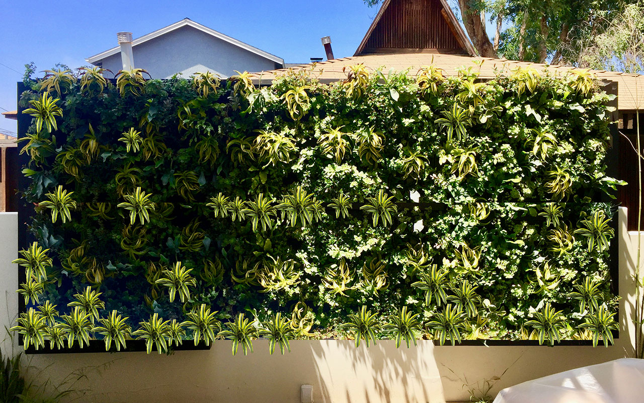 Got an Ugly Fence? Hide It with a Beautiful Exterior Living Wall System