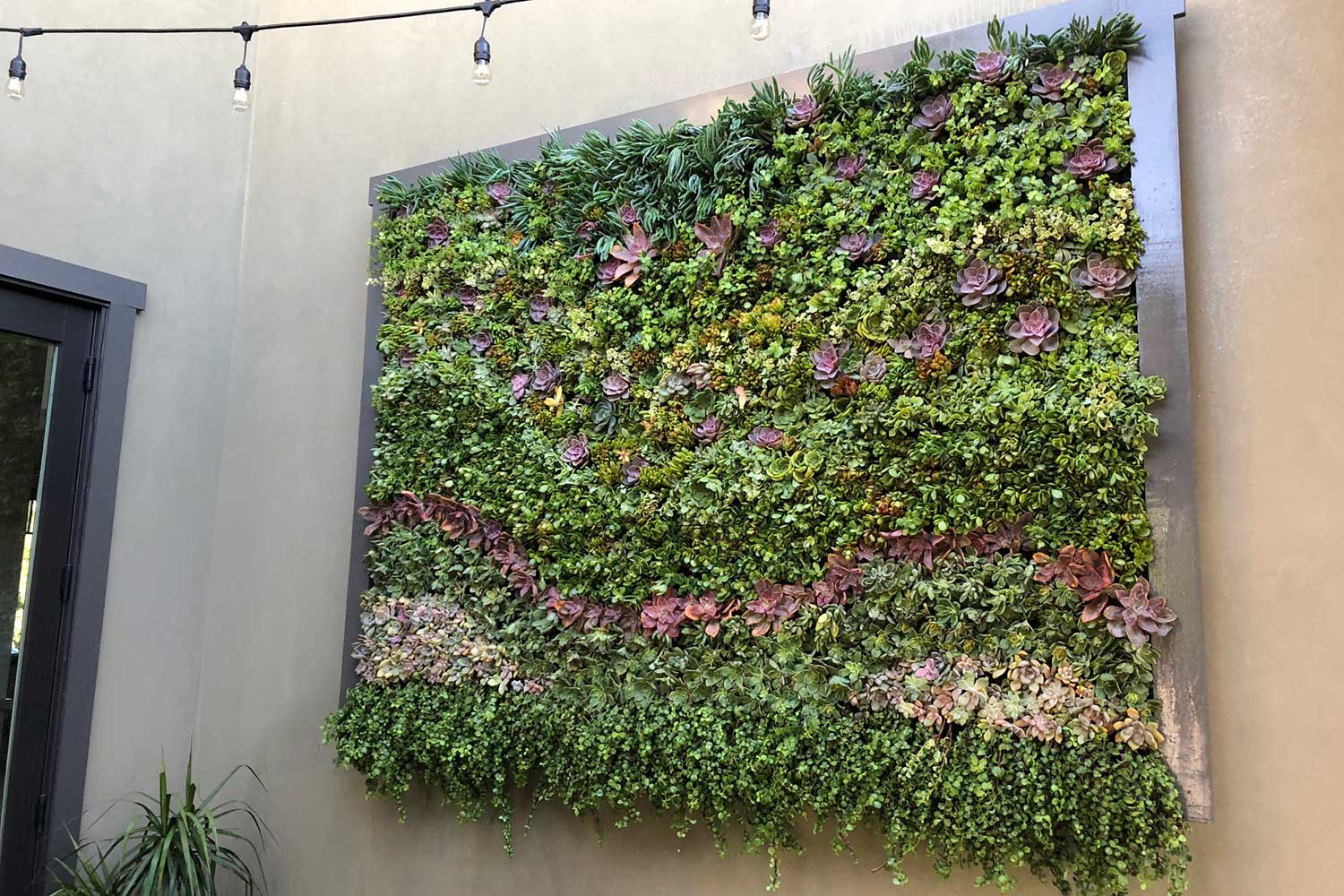 Beautiful Living Wall Ideas to Inspire Your Own Vertical ...